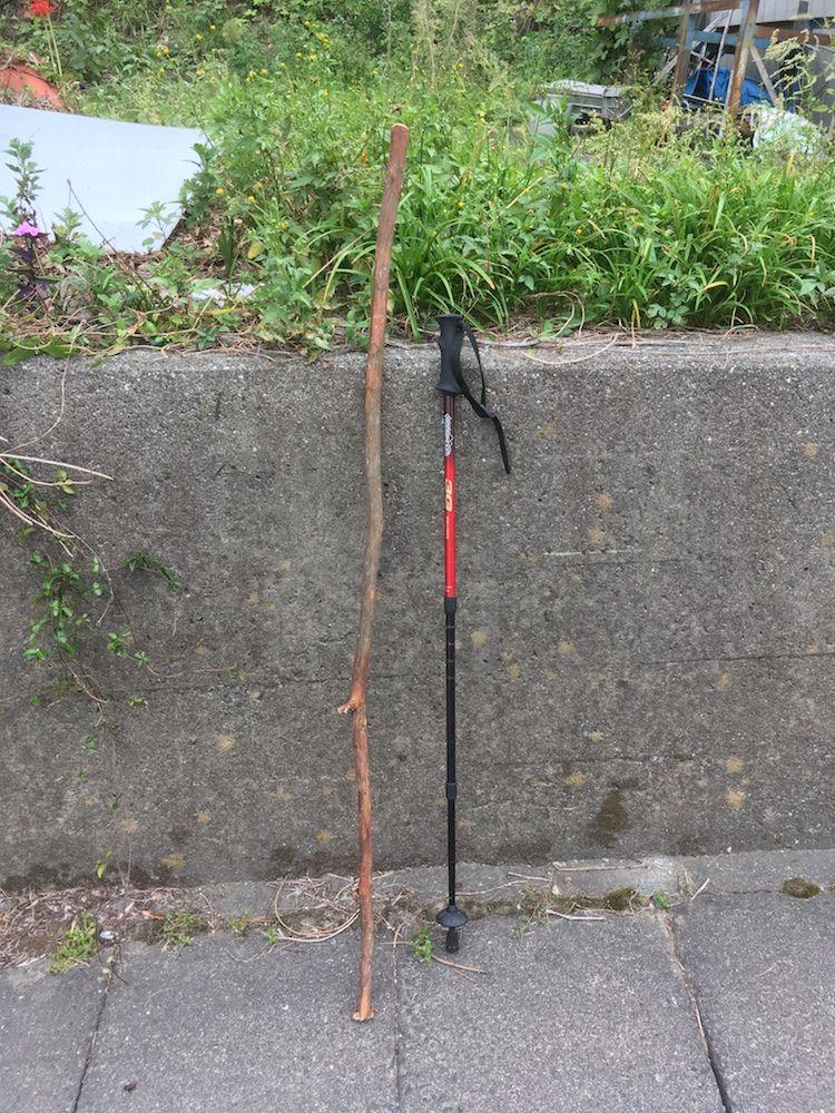 トレッキングポールと木の杖
