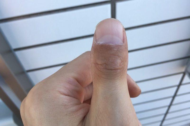 遍路41日目のツートンカラーの指